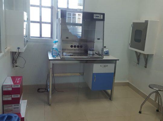 3.7. Phong Mix-PCR